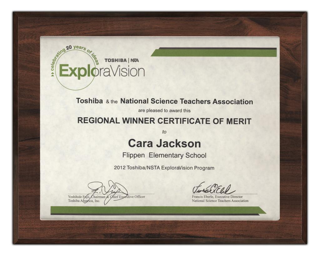 Slip In Certificate Plaques